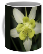 Yellow Columbine Squared 2 Coffee Mug