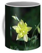 Yellow Columbine Squared Coffee Mug