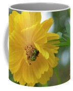 Yellow Cosmos Flower Coffee Mug