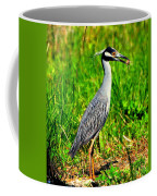 Yellow Crested Night Heron Catches A Fiddler Crab Coffee Mug