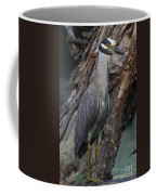 Yellow Crested Night Heron On Log Coffee Mug