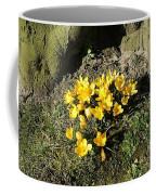 Yellow Crocus 1 Coffee Mug