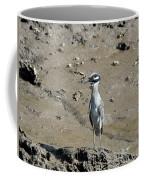 Yellow-crowned Night-heron Coffee Mug