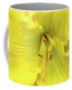 Yellow Daylily Coffee Mug