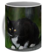 Yellow Eyed Cat Coffee Mug