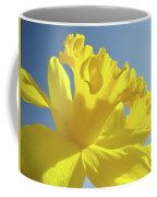 Yellow Flower Floral Daffodils Art Prints Spring Blue Sky Baslee Troutman Coffee Mug