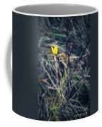 Yellow Flower In Dry Autumn Grass Coffee Mug