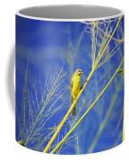 Yellow Fronted Canary Coffee Mug