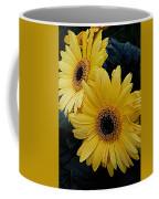 Yellow Gerbera Daisies Coffee Mug