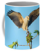 Yellow-headed Caracara Milvago Coffee Mug