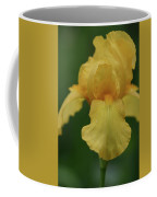 Yellow Iris Coffee Mug