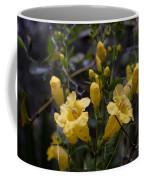 Yellow Jessamine With Raindrops Coffee Mug