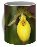 Yellow Lady's Slipper 3 Coffee Mug