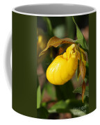 Yellow Lady's Slipper  Coffee Mug