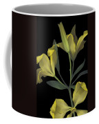 Yellow Lily On Black Coffee Mug