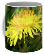 Yellow Mountain Flower's Petals Coffee Mug