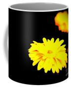 Yellow Mum On Black Backround Coffee Mug