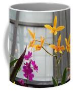 Yellow Orange And Purple Flowers Coffee Mug