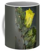 Yellow Prickly Pear Cactus Bloom Coffee Mug