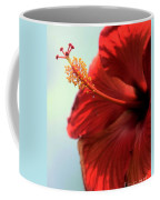 Yellow Red And Coral Hibiscus Profile Coffee Mug