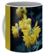 Yellow Rhododendron Flower Coffee Mug