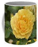 Yellow Rose IIi Coffee Mug
