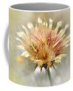 Yellow Star Thistle Coffee Mug by Valerie Anne Kelly
