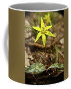 Yellow Trout Lily 1 Coffee Mug