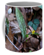 Yellow Trout Lily 2 Coffee Mug