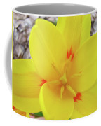 Yellow Tulip Flower Spring Flowers Floral Art Prints Coffee Mug