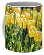 Yellow Tulip Panoramic Coffee Mug