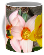Yellow Tulips Art Prints Pink Tulips Spring Florals Baslee Troutman Coffee Mug