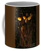 Yellow Tulips Decaying At Sunset Coffee Mug
