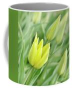 Yellow Tulips Coffee Mug