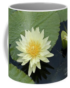 Yellow Water Lily With Bud Nymphaea Coffee Mug by Heiko Koehrer-Wagner