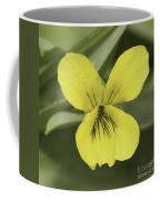 Yellow Wild Violet Coffee Mug