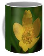Yellow Wood Anemone 1 Coffee Mug