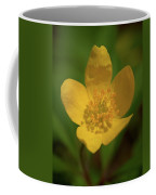 Yellow Wood Anemone 2 Coffee Mug