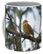 Yellowhammer Coffee Mug