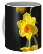 Yellows Of Jonquils Coffee Mug