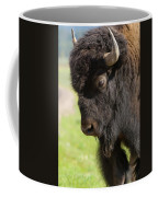 Yellowstone Bison Portrait Coffee Mug by Sandra Bronstein