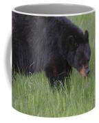 Yellowstone Black Bear Grazing Coffee Mug