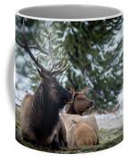 Yellowstone Wild Coffee Mug