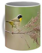 Yellowthroat Warbler Coffee Mug