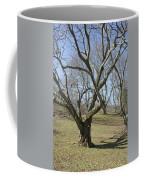 Yellowwood Tree In Winter Coffee Mug