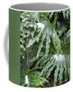Yes Snow In Florida Coffee Mug