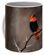 Yikes Spikes - Red Bishop Weaver Bird Coffee Mug