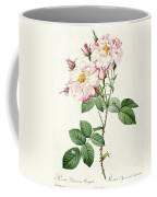 York And Lancaster Rose Coffee Mug by Pierre Joseph Redoute