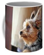 Yorkshire Terrier Dog Pose #5 Coffee Mug