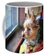 Yorkshire Terrier Dog Pose #8 Coffee Mug